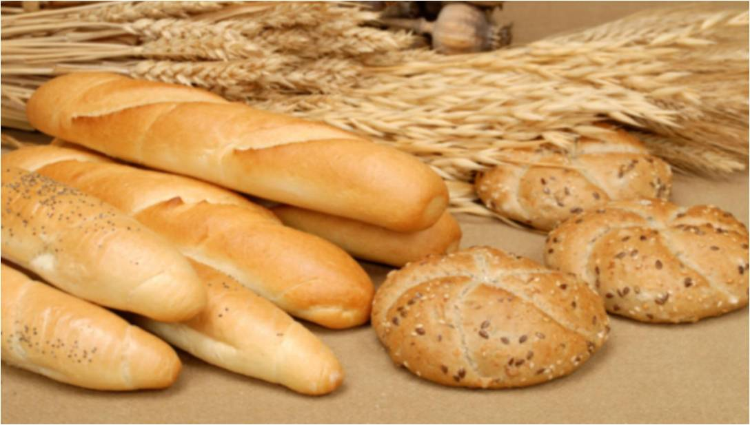 bread-a-source-of-nutrients